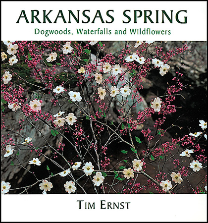 ARKANSAS SPRING picture book cover